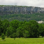 View of the Millbrook Cliff, the highest cliff at the Gunks