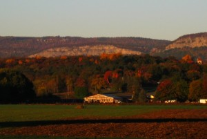 View of the Near Trapps cliff at the Gunks in autumn colors.