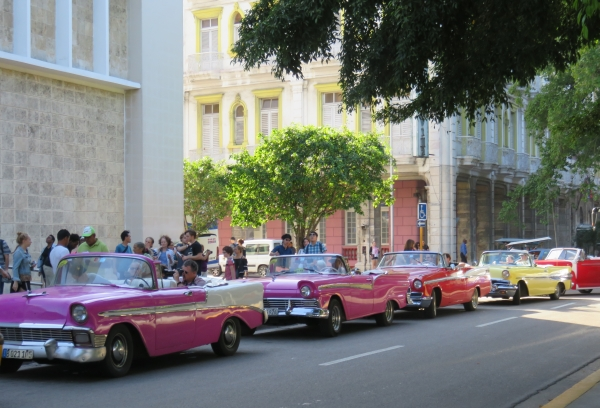 A row of vintage convertible cars used as taxis in Havana, Cuba